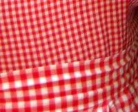 Picnic-tablecloth