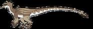 Komodar