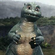 Shin Minilla Little Godzilla