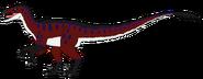 Raptor (2)