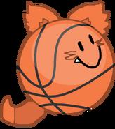 Basket ball fox updated