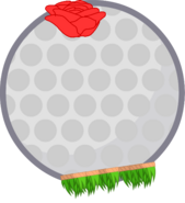 Hawaii Golf Ball New Body