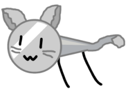 Cat Naily