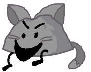 Cat Rocky