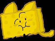Cat Spongy