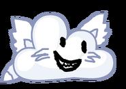Fox Cloudy