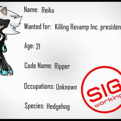 Perfil en la SIG de Reiku.