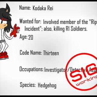 Perfil de Rei en la SIG