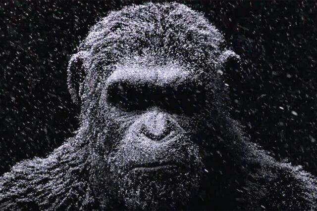 File:War-for-the-planet-of-the-apes.0.jpeg