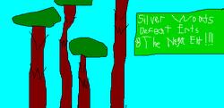 GrandChaseFan SilverWoods