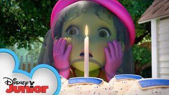 Happy Birthday in French!🎂 - Music Video - Fancy Nancy - Disney Junior