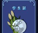 Kaguya Academy