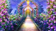 Entering Rose Garden