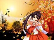 Princess autumn