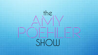The Amy Poehler Show