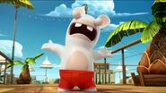 Lifeguard Rabbid