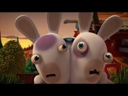 Black Eye Rabbid