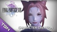 Final Fantasy 14 Online A Realm Reborn Character Creation & Benchmarking