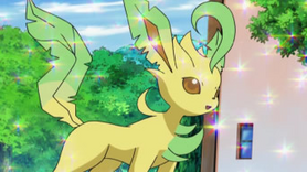 Zoey Leafeon