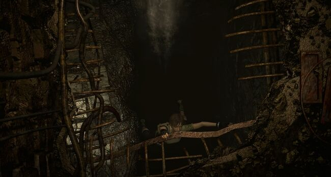 Billy Coen and Rebecca Chambers Fall Rescue 2