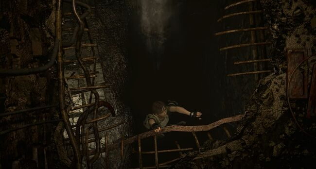 Billy Coen and Rebecca Chambers Fall Rescue 3