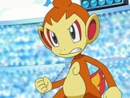 1-Chimchar