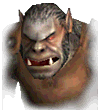 Orc12