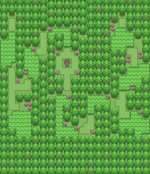Espo Forest
