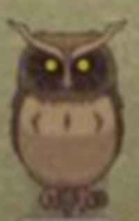 The owl-0