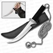 Weapon for ninja assassins