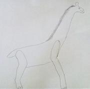 All Todays Giraffe V2