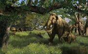 American Northern mammoth