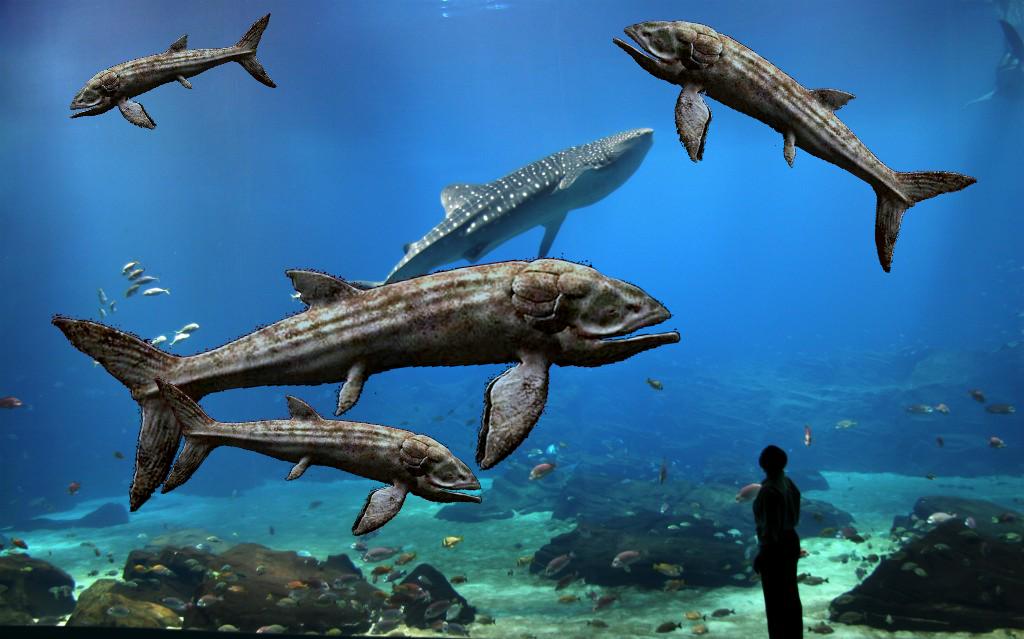 Leedsichthys | Fanon Wiki | FANDOM powered by Wikia