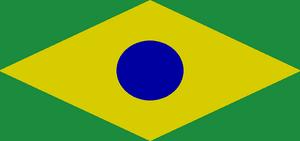 Amazon flag