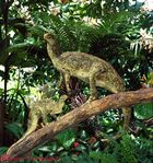 00997-Hypsilophodon-up-tree-R