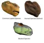 Dinosaur-Iguanodont Heads
