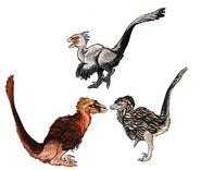 Birds-De-Avianed