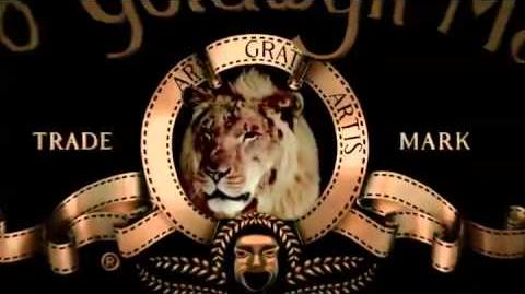 MGM 2013