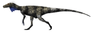 Herrerasaurus ischigualastensis by primevalraptor-d6e1cp3
