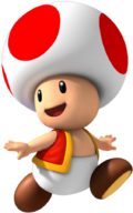 Toad MSS