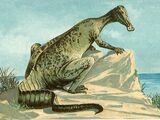 Sirenosaurus