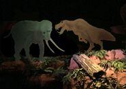 Energy-adventures-hippo-elephant-mammals