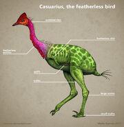 Jurassic Park Cassowary