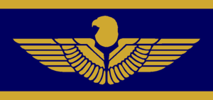 Hylar flag
