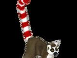 Candy Cane Lemur