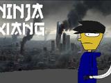 Ninja Xiang (TV series)