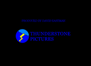 Thunderstone Pictures 1980-2009 Closing Logo