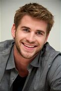 Liam-Hemsworth-hunger-games-2