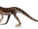 Terrestrisuchus (SciiFii)