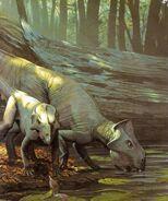Leptoceratops 2dcd